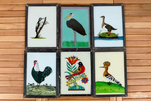 Indian framed paintings of birds