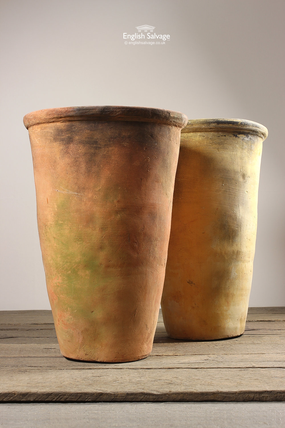 Tall Buff Colour Flower Tree Pots Planters